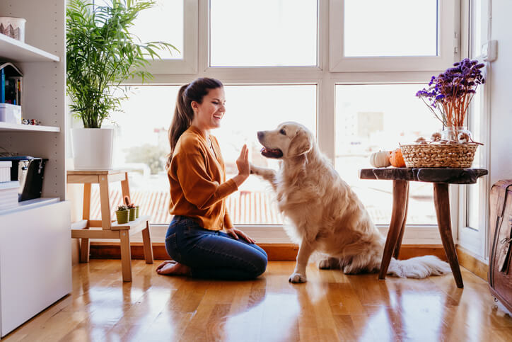 Student Playing With Her Dog